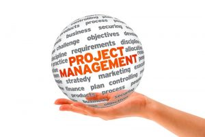 project_management_globe